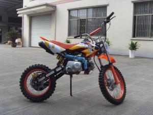 125ccm Automatik Dirtbike Cross Bike 17/14 Reifen inkl. E-Starter 009