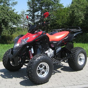 quad atv shineray 200cc automatik quad mit. Black Bedroom Furniture Sets. Home Design Ideas