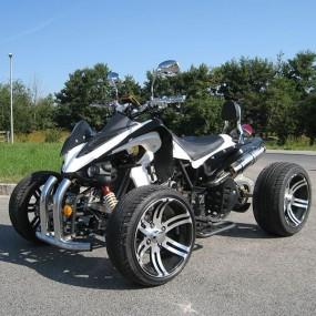 quads buggys pocket bikes und skyteam bikes onlineshop. Black Bedroom Furniture Sets. Home Design Ideas