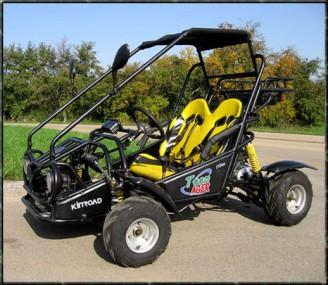 Kinderbuggy gokart buggy für kinder mit 110ccm 4 takt motor
