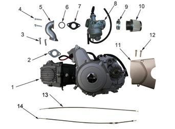 Motor und Anbauteile Speedbird Quad