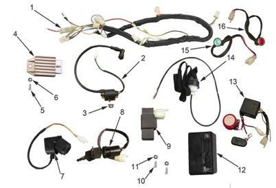 Elektrische Teile CDI Zündpsule Kabelbaum Speedbird CXG 125