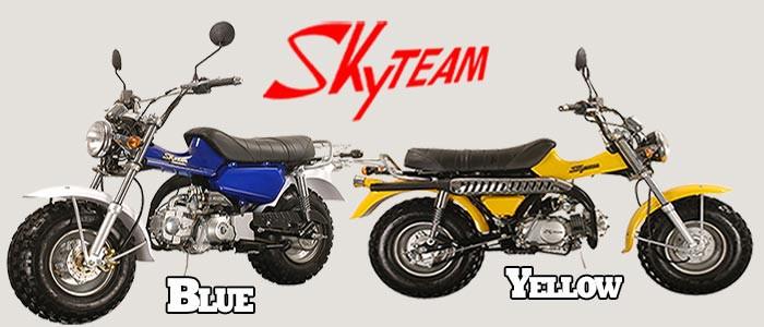 Skyteam T-Rex 125 - 125cc Banner
