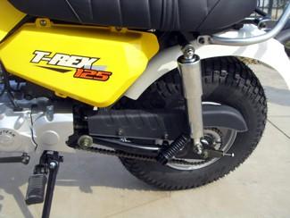 Skyteam T-Rex 125 ccm Federbein