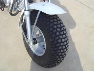 Skyteam T-Rex 125cc Vorderreifen