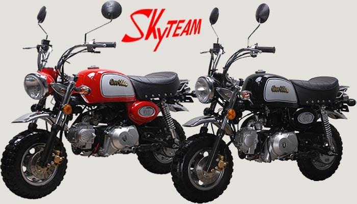 Skyteam 125cc Gorilla / Bongo
