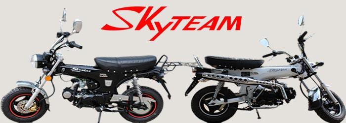 skyteam dax 125 st125 6 125ccm mini motorrad f r 2 personen euro 4 version pocket bike dirtbike. Black Bedroom Furniture Sets. Home Design Ideas