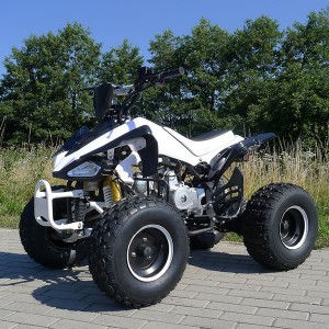 125cc Quad Speedy Hawk für Kinder