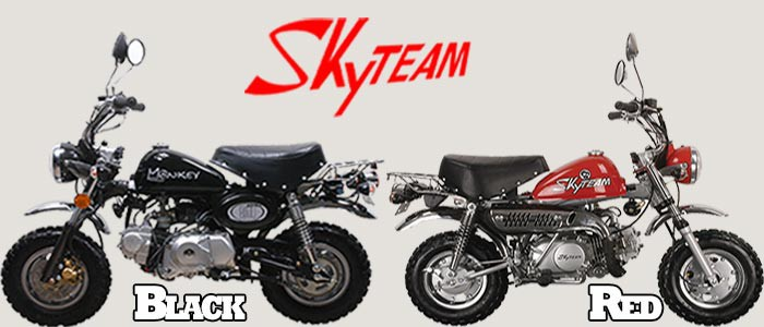 Skyteam Monkey Banner